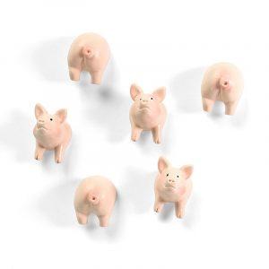 magnet-schwein